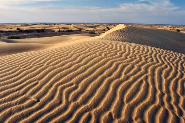 Desierto de Rajasthan