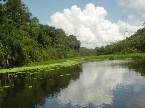 Iquitos, puerta de entrada al Amazonas