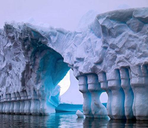 Fotos de la antartida - Foro de Antártida | Viajeros