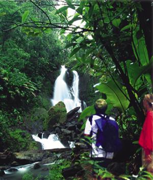 El Parque Nacional de Corcovado en Costa Rica