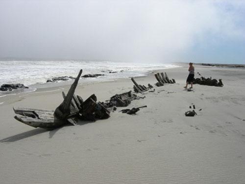 Parque Costa Esqueleto, naufragios en Namibia
