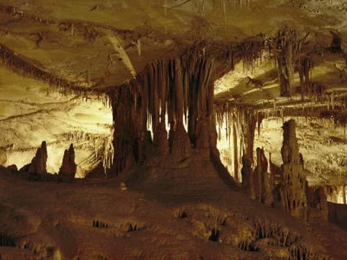 cuevas lehman