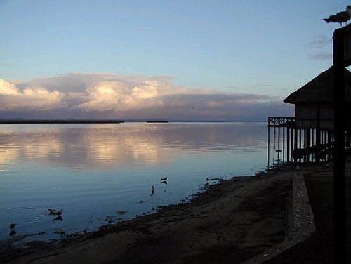 Parque Estuario Santa Lucía, en Sudáfrica