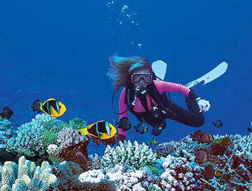 Bucear en Fiji