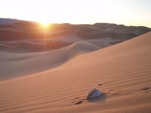 Desierto de Gobi, destino de aventuras en Mongolia