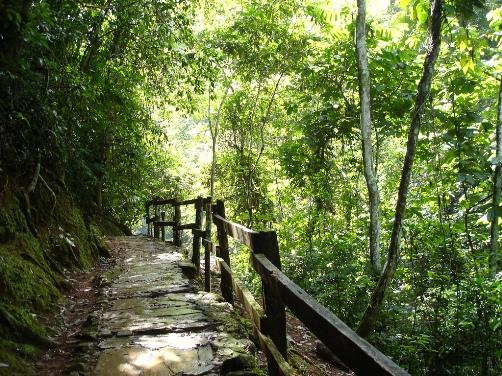 Visita al Parque Nacional Guatopo, en Venezuela