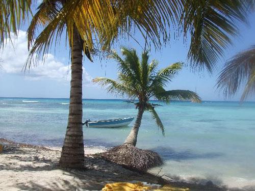Excursión a la Isla Saona, en República Dominicana