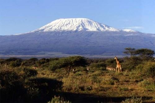 Conociendo el Parque Nacional del Kilimanjaro
