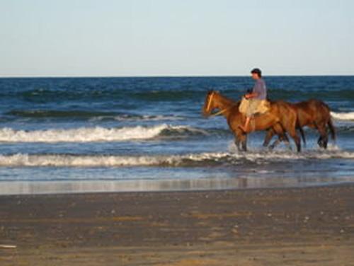 Paseando a caballo por la playa