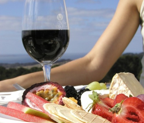 Guia de turismo del vino