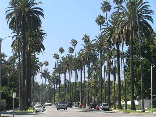 De playas en Los Angeles: rompiendo mitos