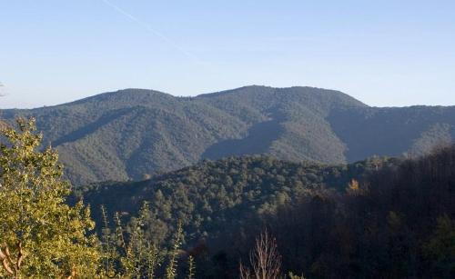 Parque del Montnegre: la naturaleza, cerca