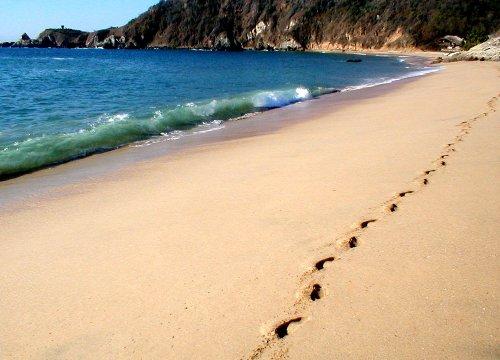Playa Mazunte, un destino natural en Mexico