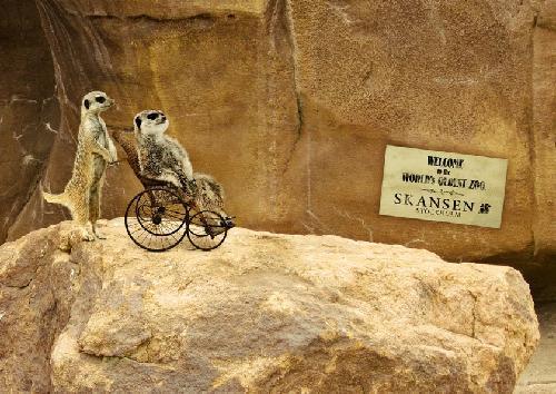 Skansen, zoo y museo al aire libre