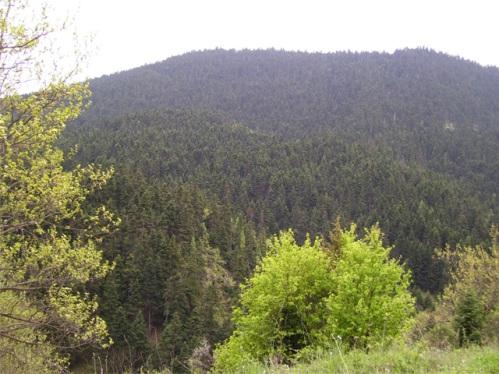 Parque Nacional Iti, en Grecia