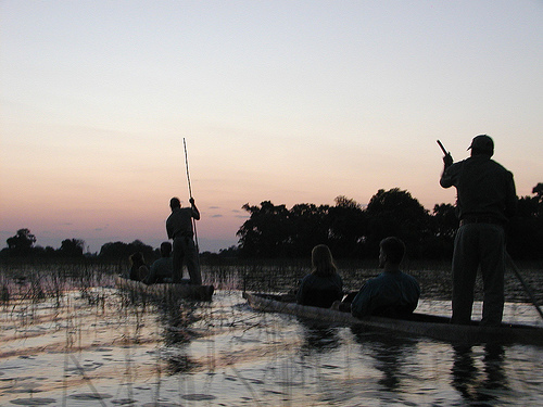 Paseando en mekoro sobre el Okavango