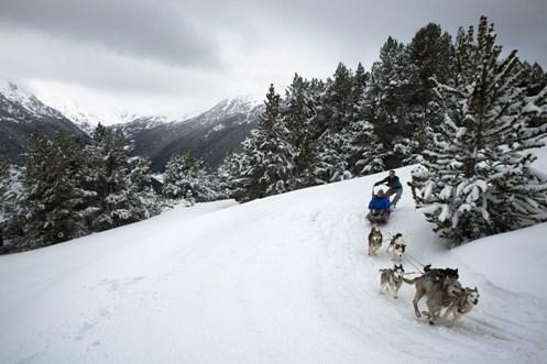 Carrera de trineos en Andorra