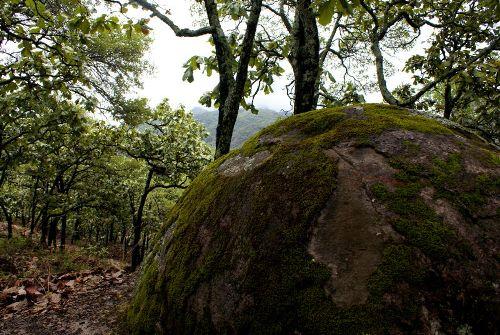 Ecoturismo en las Piedras Bola