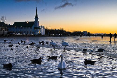 Viaje a Reykjavik, guía de turismo