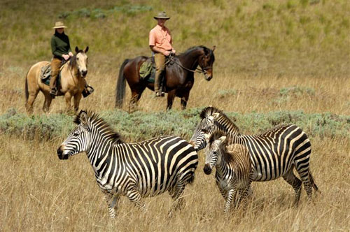 safari-a-caballo-en-malaui