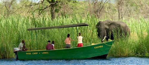 safari-en-malaui