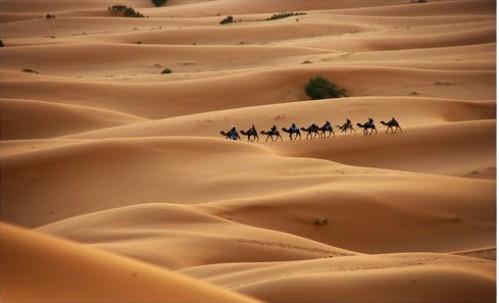 Turismo en el Sahara