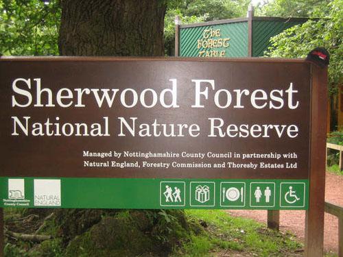 bosque sherwood