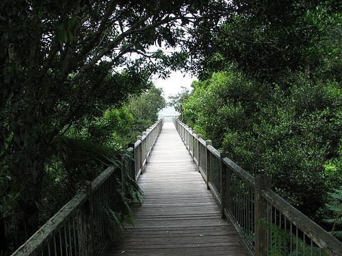 Skywalk, sendero en el Parque Nacional de Dorigo