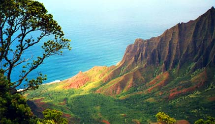 Isla del Coco y Kauai, el Parque Jurasico original