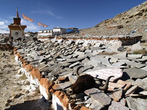 tibet manantiales