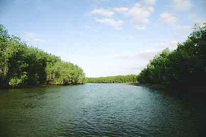 tumbes-manglares.jpg