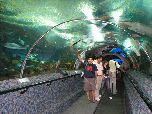 Underwater World, el oceanário de Singapur